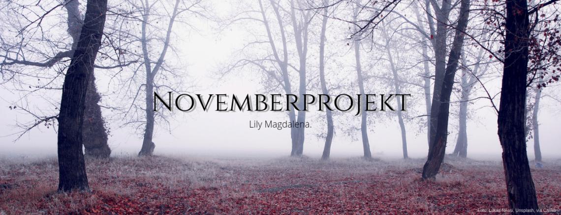 Novemberprojekt, Gothic Novel, Fantasy, Urban Fantasy, Work in Progress, Arbeitstitel